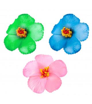 Квітка Гібіскус асорті