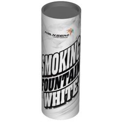 Дим білий