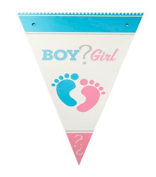 Декорація Гірлянда прапорці Girl or Boy