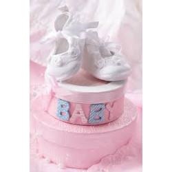 Подарунковий пакет Baby рож. 25*37см папір 45056 Китай
