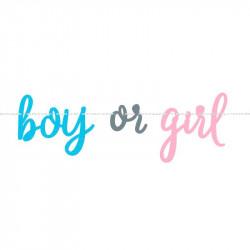 Гірлянда Girl or Boy