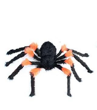 Павук великий чорно-оранжевий