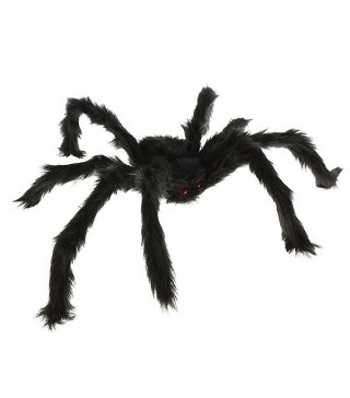 Павук декоративний великий чорний