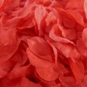 Лепестки роз Красные 20г