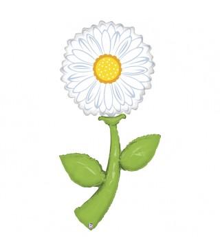 Кулька квітка Ромашка