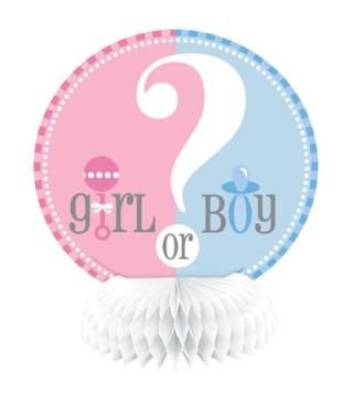 Декорація BOY ? GIRL 15,24см
